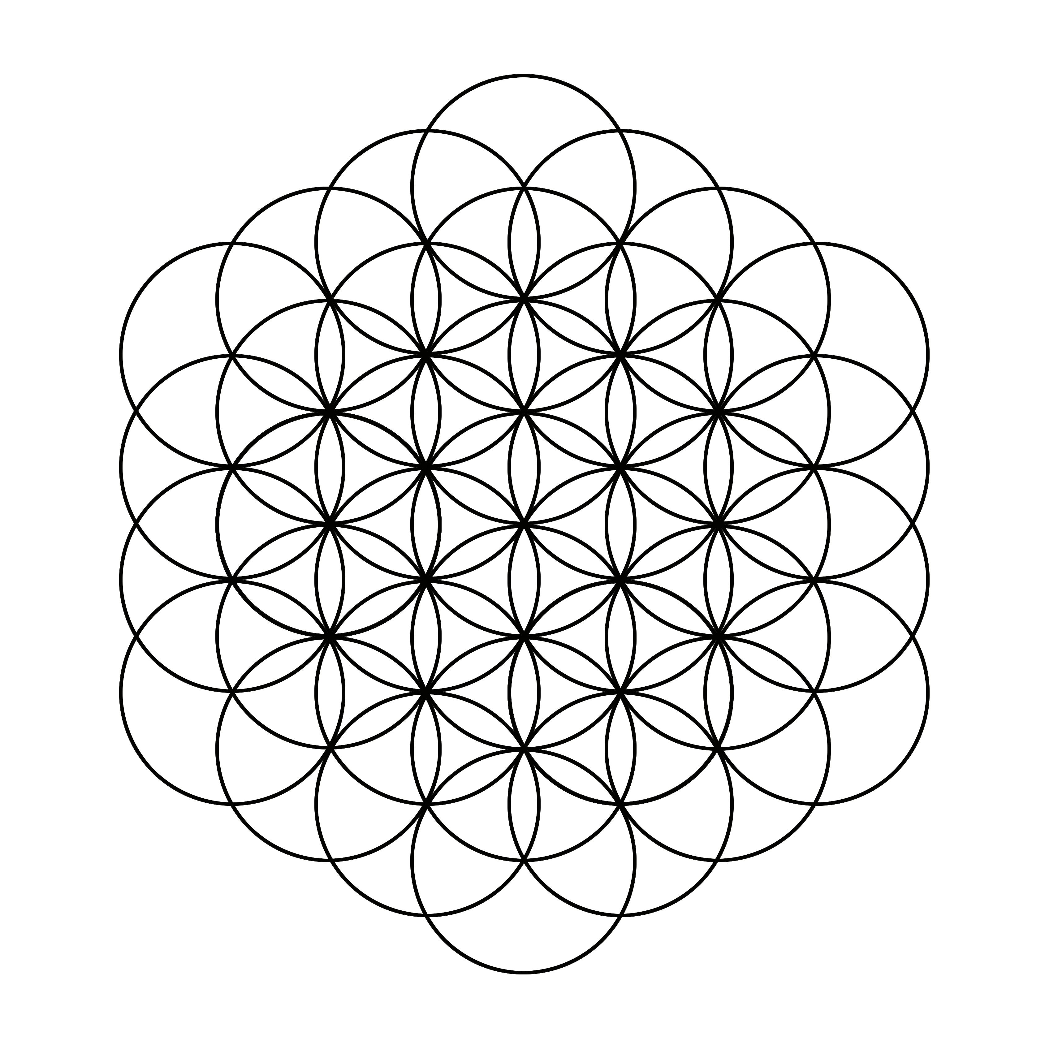 La Fleur De Vie Matrice De L Ensemble Des Sytemes Symboliques