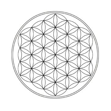 Les diviseurs du cercle et le symbolisme des 22 polygones du cercle - Symbole de la vie ...